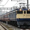 写真: ef65-1105-20080310