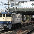 写真: ef65-1103-20080208