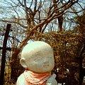 写真: IMG_0114