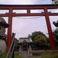 Photos: 下郷熊野神社(5月28日、横浜市戸塚区)