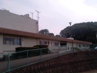 神奈川県動物愛護センター(6月2日)