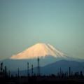 Photos: Mt. Fuji・・・・・132キロの彼方から(千葉市)