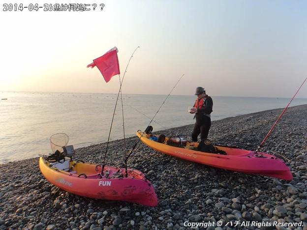 Photos: 2014-04-26魚は何処に?? (4)