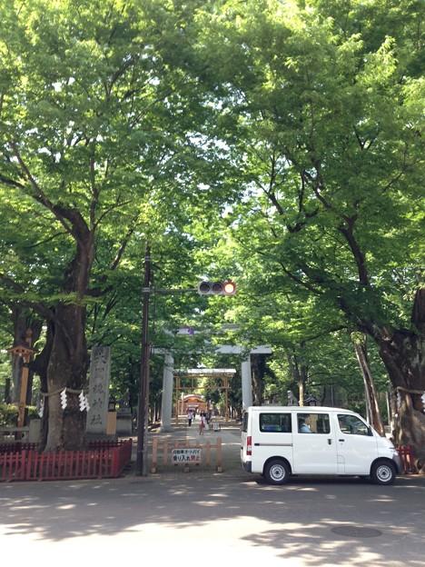 大国魂神社(府中市)