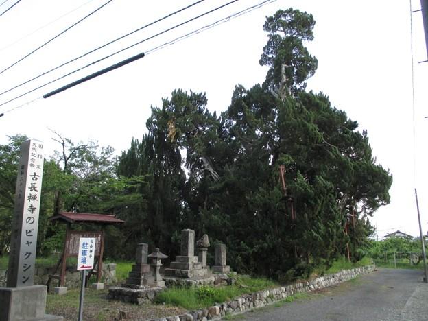 古長禅寺(南アルプス市鮎沢)