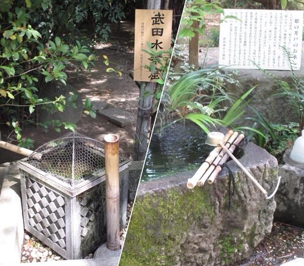 躑躅ヶ崎館・武田神社(甲府市古府中町)