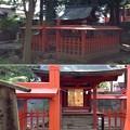 Photos: 大井俣窪八幡神社(山梨市北)