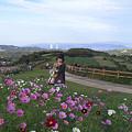 Photos: あわじ花さじき (1)