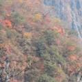 日光中禅寺湖畔の風景
