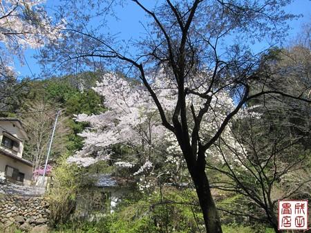 黒山三滝17