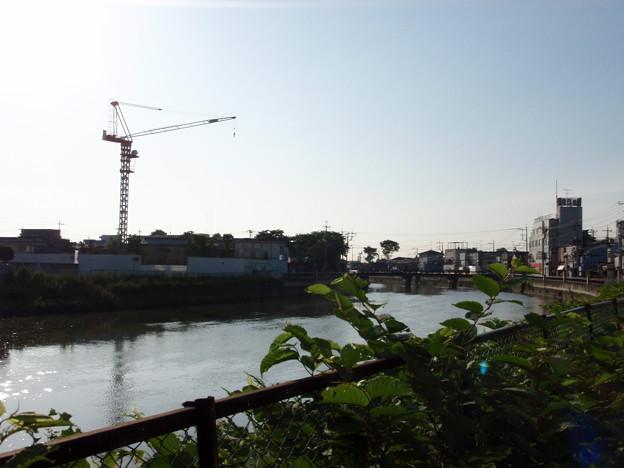 写真: sanpo527 003