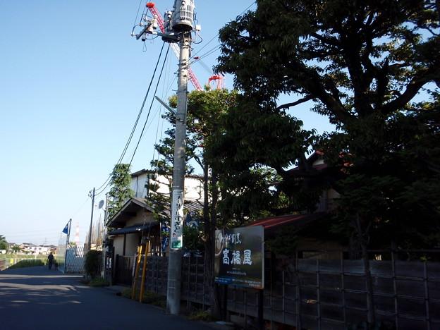 写真: sanpo527 008