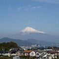 Photos: 初日本平