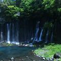 Photos: 白糸の滝(1)