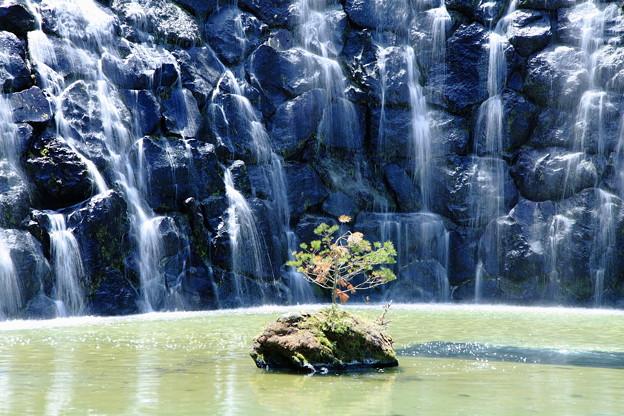 花の都公園 滝