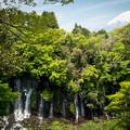 2014年05月03日_富士山と白糸の滝