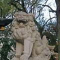 狛犬・神社