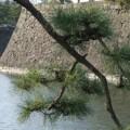 Photos: 城下