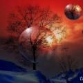 フォトコラージュと創作画像