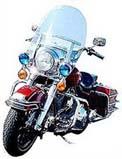 Photos: タロのバイク? ハーレーロードキング