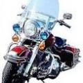 タロのバイク? ハーレーロードキング