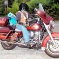 Photos: タロのマイバイク?号ウルトラ