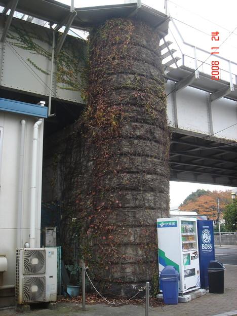 東武線橋脚につたがからまっている。 浅草・向島 DSC00607