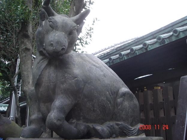 牛像 牛嶋神社 浅草・向島 DSC00603