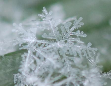 コンデジ 雪の結晶