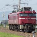 Photos: EF81‐136 AT出場試運転 vol.2