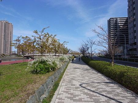 汐入公園(2009/3)