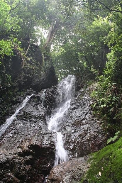 五常の滝(埼玉県日高市)2