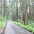 Photos: 五常の滝(埼玉県日高市)5