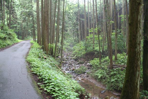 五常の滝(埼玉県日高市)6