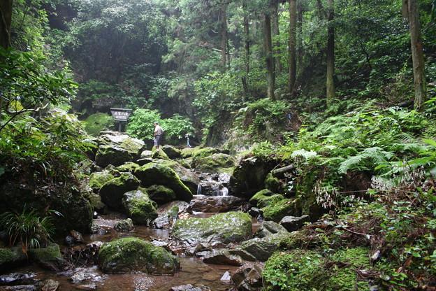 五常の滝(埼玉県日高市)17