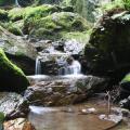 Photos: 五常の滝(埼玉県日高市)18