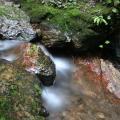 Photos: 五常の滝(埼玉県日高市)20