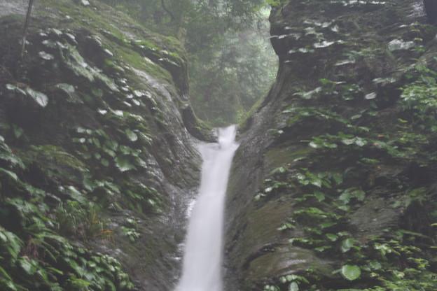 宿谷の滝(埼玉県:毛呂山町)2