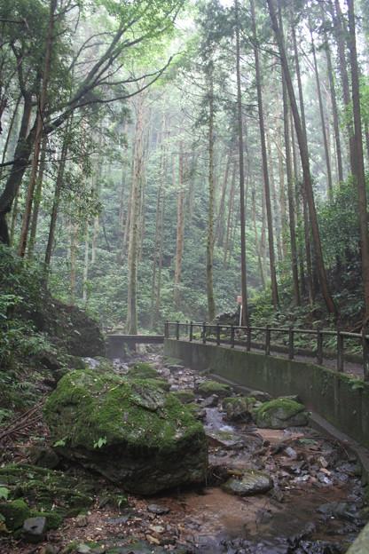 宿谷の滝(埼玉県:毛呂山町)6