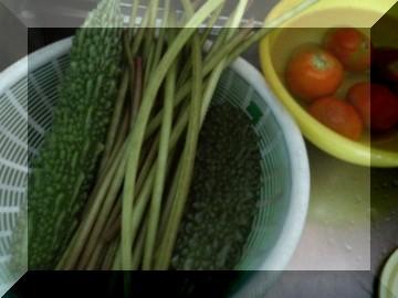 0807収穫