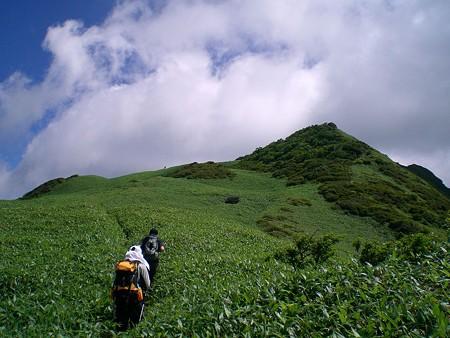 笹ヶ峰山頂直下