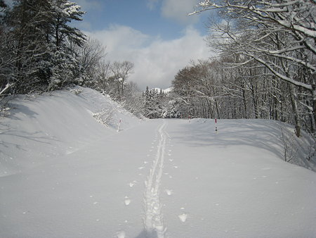 先行する山スキーのトレース