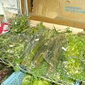 写真: 山菜売り場