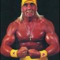 Photos: Think of Hulk Hogan: Protect Brain from Stroke!