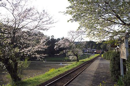 小湊鉄道 17 飯給駅 春の夕暮れ