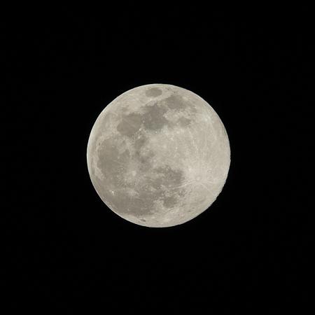 近地点の満月
