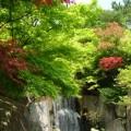 写真: 霞ヶ浦総合公園(土浦)